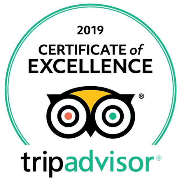Tripadvisor Review
