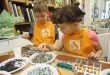 Mosaic Lesson For Families