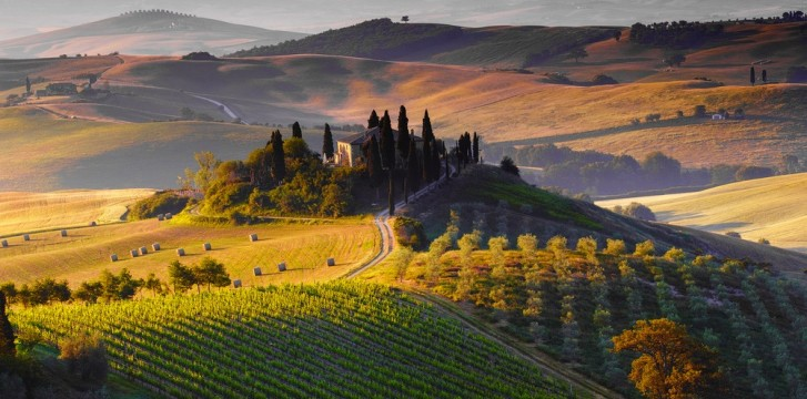 Wines in Tuscany