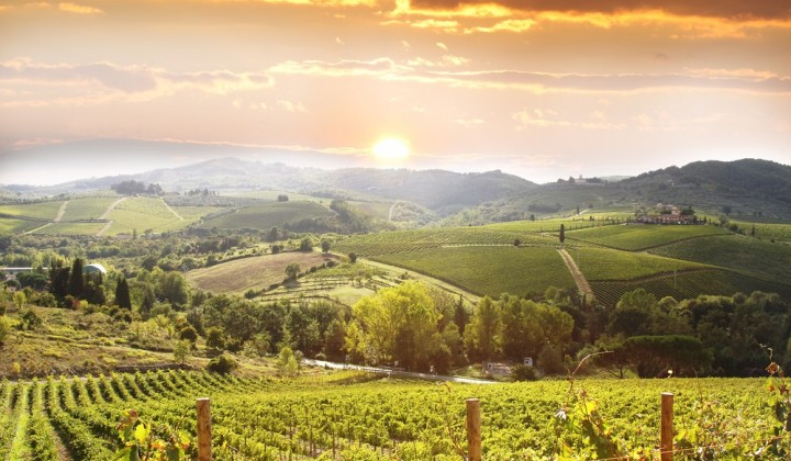 Best Wine tasting Itineraries in Tuscany
